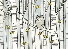 Owl in birch forest. 100 owls project by david scheirer