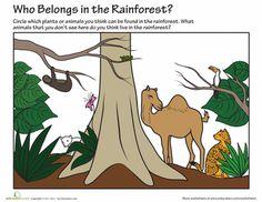 Science week 1, Biomes.  Worksheets: Who Belongs in the Rainforest?