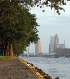 Downtown Tampa viewed from Channel Drive on Davis Island