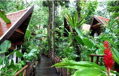 Marina Cottage - Phuket Thailand. When the jungle touches the sea... I would love to go back again ---- Marina Cottage, Phuket Thailande ou quand la jungle rencontre la mer. Un séjour magique ! Je serais ravie d'y retourner.