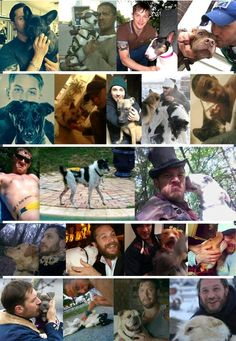 Tom Hardy and dogs collage. The first pic is definitely my favorite, even if only half of his face is showing ❤