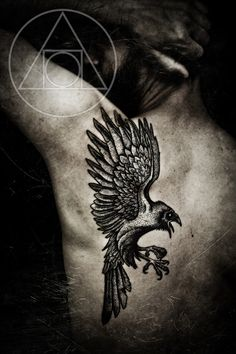 Raven tattoo on back