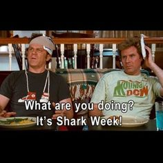stepbrothers quotes
