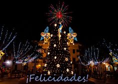 50 best puerto rico christmas images on pinterest puerto ricans christmas card that features the tree in the plaza de armas in old san juan holiday greeting cardschristmas cardschristmas in puerto ricothe m4hsunfo