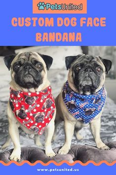 PUT YOUR FACE OR YOUR DOG FACE ON A BANDANA This collar bandana can be slid onto your dog's collar and stays safely in place while walking, playing or just doing doggy things. Definitely only for the coolest dogs in town. Dog Memorial, Memorial Gifts, Dog Lover Gifts, Dog Lovers, Love Gifts, Unique Gifts, Fun Gifts, Presents For Mom, Christmas Gifts For Mom