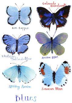 rebeccabradley__butterfliesblueweb - maybe for mushrooms?