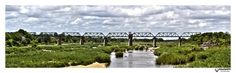 6 image panoramic shot of the Kruger National Park