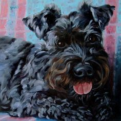 Skipper, the spirited Black Schnauzer represents this listing for the 10x10 size CUSTOM oil portrait.    Do you have a lively pet in your life