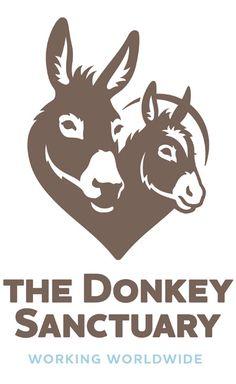 The Donkey Sanctuary Logo and Identity