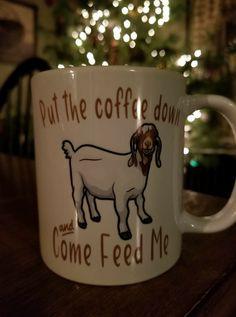 5 Things You Need To Know About Raising Pygmy Goats Psalm 139, Cute Goats, Mini Goats, Goat Toys, Show Goats, Goat Barn, Boer Goats, Nigerian Dwarf Goats, Raising Goats