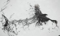 Framed Gothic Print - Crow/Raven Flying Through The Mist Forming Its Shape (Art)