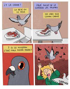 En cualquier momento las palomas podrían hacer esto:
