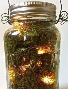 jar lights... with moss!