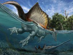 Spinosaurus and his cute webbed feet!