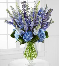 Presented in a superior clear glass footed vase, this flower bouquet is a wonderful way to extend your love and affection across the miles.  Inclused 12 stems of blue delphinium, 12 stems of purple delphiniumm, 7 stems of dark blue hydrangea, 7 aspidistra leaves and a superior clear glass footed vase.