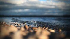""""""" la cura per ogni cosa è l'acqua salata: sudore, lacrime o il mare."""""""