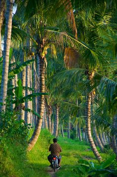Bali, Indonesia >>> You ever have a place in your mind that you are just dying to see? Indonesia is high on that list for me- I just need to go see it!!! >>> What country is on your must-see, wanderlust driven daydream list? www.villapantaibali.com  Don't forget when traveling that electronic pickpockets are everywhere. Always stay protected with an Rfid Blocking travel wallet. https://igogeer.com for more information. #igogeer