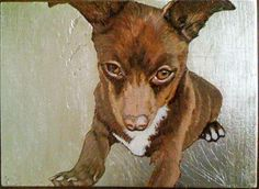 Jane O'Hara, Artist, Curator, Rhode Island, Animal Paintings Mercy For Animals, Intellectual Property, Private Property, Animal Paintings, Dog Art, 21st Century, Goats, Pup, Moose Art