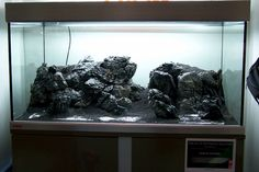 20 Ide Aquacape Batu Akuarium Pencari Ikan Desain Lanskap