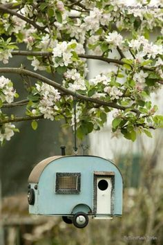 West Virginia cool bird house