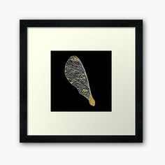 'Dried Seed' Framed Print by Gracefulrebel Framed Prints, Art Prints, Black Backgrounds, My Arts, Printed, Drawings, Awesome, Artist, Shop
