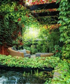 Backyard inspiration: Australian landscape designer Eckersley Garden Architecture.