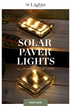 Our solar powered pathway lights are the perfect way to illuminate your yard and save on your energy bills. Backyard Patio Designs, Backyard Projects, Front Yard Landscaping, Outdoor Projects, Backyard Lighting, Outdoor Lighting, Backyard Makeover, Landscape Lighting, Outdoor Gardens