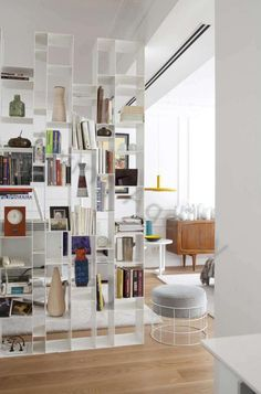 living agency.    book shelves.  Cloison de livres