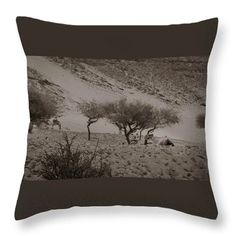 Throw Pillow featuring the photograph Camels by Silvia Bruno