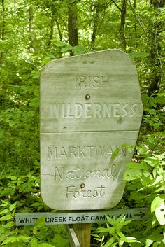 This spring explore the myths and tales of the Irish Wilderness in Mark Twain National Forest near Rolla, Missouri. Mark Twain National Forest, Missouri State University, Missouri Camping, Springfield Illinois, Adventure Is Out There, Vacation Trips, The Great Outdoors, Wonders Of The World, State Parks