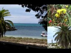 Teacher Exchange trip to Rottnest Island - http://www.nopasc.org/teacher-exchange-trip-to-rottnest-island/