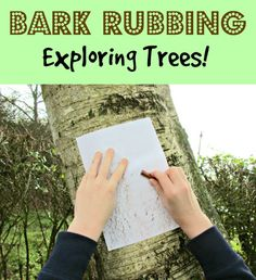 Exploring trees through the craft of bark rubbing. This really simple craft idea is a great activity to do with kids