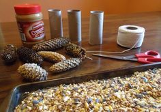 Pine Cones and Toilet Paper Tubes = DIY Bird Feeders I would totally do this with Jackson