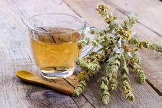 Το τσάι του βουνού ενισχύει τις γνωστικές λειτουργίες, καταπολεμά τις εκφυλιστικές ασθένειες και δεν έχει παρενέργειες. Έχει σπάνια οφέλη και ιδιότητες για την υγεία