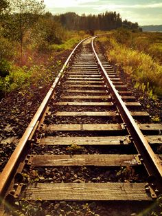andybestthejourney:  Tracks of life. A place to move forward or look back. What will it be? It's important to realize where you've been and where you've come from. Enjoy the life you have now, learn from your mistakes, and enjoy everything in stride.