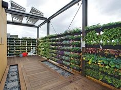 Vertical Rooftop Garden | DIY Network's Made + Remade >> http://www.diynetwork.com/made-and-remade/learn-it/what-you-need-to-know-before-buying-a-tiny-house?soc=pinterest
