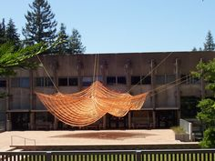 local ecologist: Untitled architecture installation