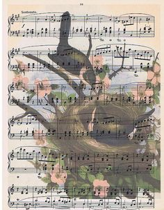 Original French Sheet Music with Nest and Birds Printed on it