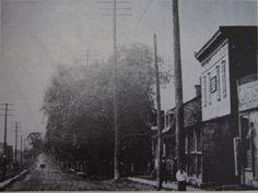 rue crémazie direction ouest prise de la rue lajeunesse année1920