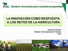 LA INNOVACIÓN COMO RESPUESTA A LOS RETOS DE LA AGRICULTURA> Universidad Ideas, Financial Analysis, Agriculture, Financial Statement
