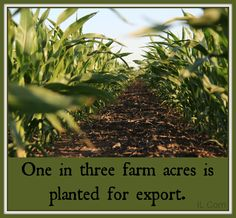 Exports Exports Exports #Agriculture
