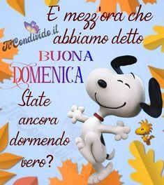 Snoopy, Facebook, Proverbs Quotes