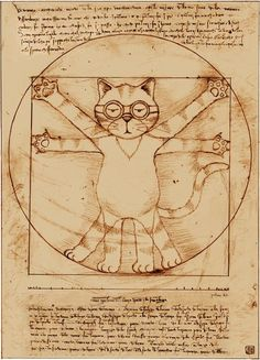 Vitruvian cat - adapted from Leonardo Da Vinci