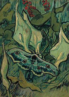 Emperor Moth / Vincent van Gogh / 1889
