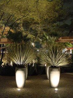 -decoração de jardim - beautiful lighting.