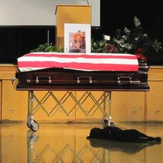Faithful military dog with it's master one last time.  There are many retired animals who worked with the police and military force that need loving homes that will understand their PTSD....making sure they have a happy life