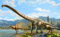 Scientists announce discovery of new type of mamenchisaurid dinosaur from Central China - Qijianglong.