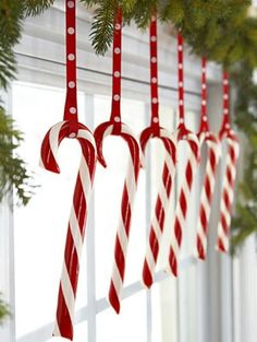 Candy canes in a window