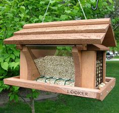 Which Bird Feeder Do I Need?