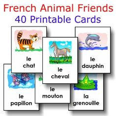 ANIMALS: 40 large cards -- FREE to download & print!